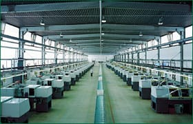 Screw Cap Production Lines
